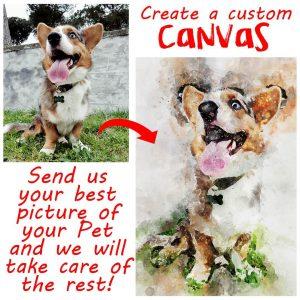 canvas pet photo